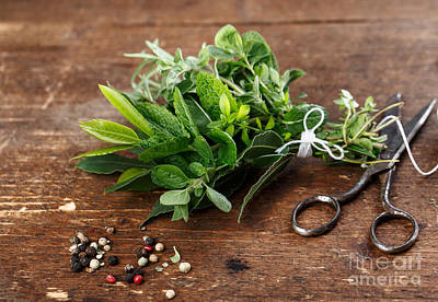 Cotton Photograph - Kitchen Herbs by Nailia Schwarz