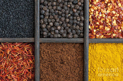 Indian Corn Wall Art - Photograph - Kitchen Spices by Tim Gainey