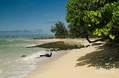 Photograph - Kite Beach Kanaha Beach Maui Hawaii by Sharon Mau