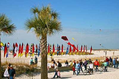 Kite Photograph - Kite Day At St. Pete Beach by Greg Joens