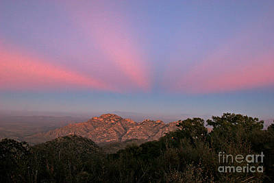 Quinlan Photograph - Kitt Peak by Babak Tafreshi