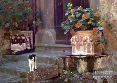 Kitten Italiano Art Print by Barbie Corbett-Newmin