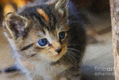 Digital Art - Kitten Oil Painting by Jill Lang