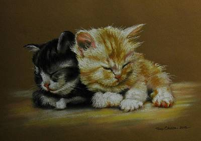 Pastel - Kittens Asleep by Tony Calleja