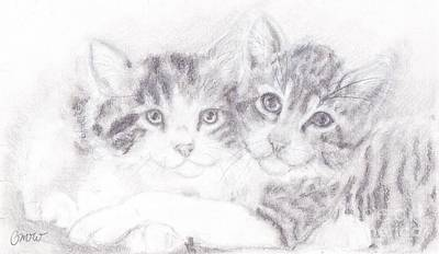 Gray Tabby Drawing - Kitties by Caitlin  Wells