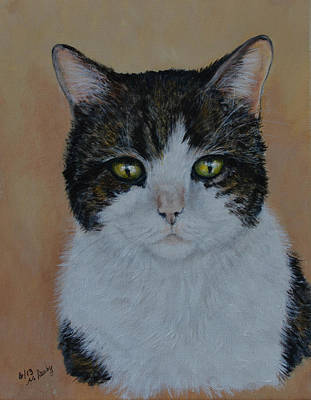 Painting - Kitty Cat by Nancy Lauby