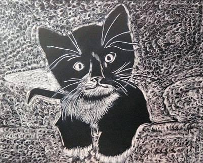 Kitty In Blanket Art Print