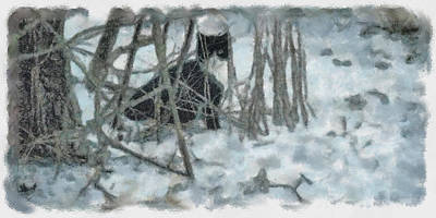 Photograph - Kitty In The Cold by Trish Tritz