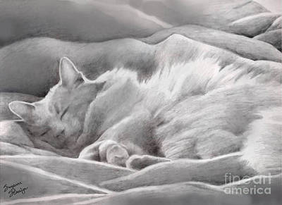 Kitty In The Covers Art Print