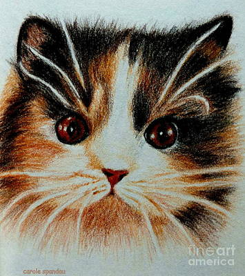 Painting - Kitty Kat Iphone Cases Smart Phones Cells And Mobile Phone Cases Carole Spandau 300 by Carole Spandau