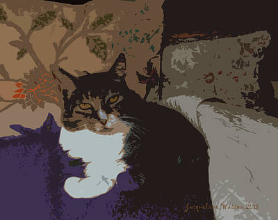 Photograph - Kitty Queen by Jacqueline  DiAnne Wasson