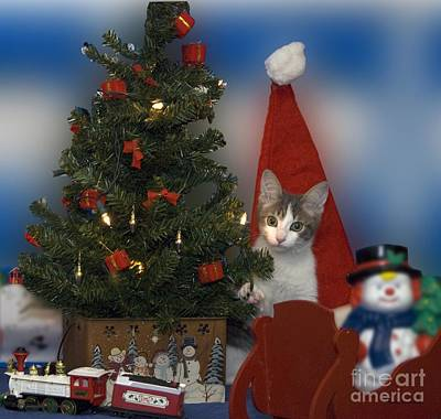 Tom Woolworth Digital Art - Kitty Says Have A Happy Holiday by Thomas Woolworth