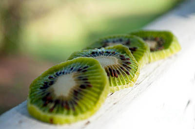 Kiwi Photograph - Kiwi Four by Gwyn Newcombe