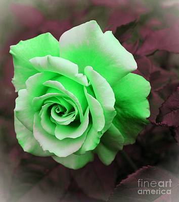 Kiwi Lime Rose Art Print by Barbara Griffin