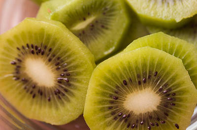 Photograph - Kiwi For Lunch by Miguel Winterpacht