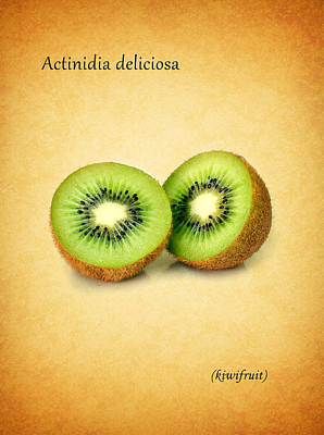 Kiwifruit Print by Mark Rogan