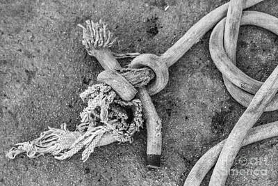 Photograph - Knot by Eugenio Moya
