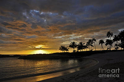Photograph - Golden Paradise by Gina Savage