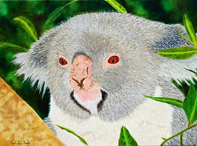 Koala Art Print by April Moseley