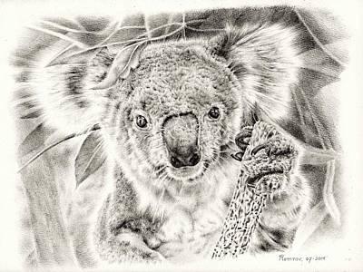 Animals Drawings - Koala Garage Girl by Casey