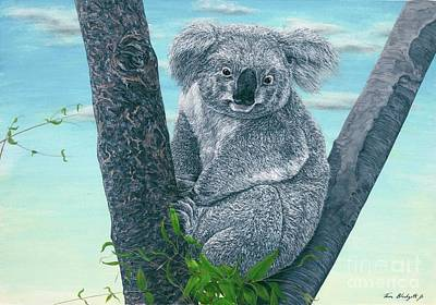 Koala Painting - Koala by Tom Blodgett Jr