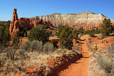 Photograph - Kodachrome Basin Trail by Daniel Woodrum