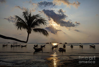 Koh Tao Sunset Art Print by Alex Dudley