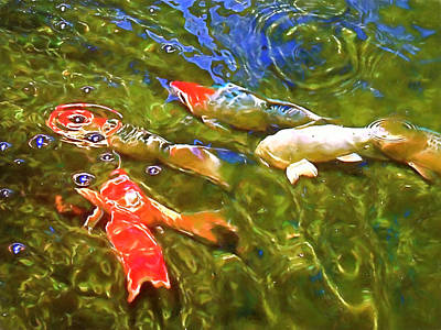 Art Print featuring the photograph Koi 1 by Pamela Cooper