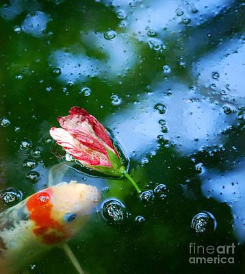 Koi Digital Art - Koi And Floating Flower by Nancy Mueller