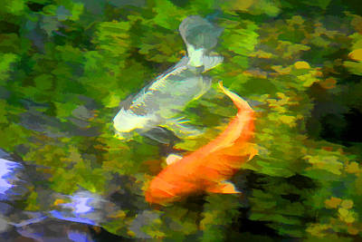 Photograph - Koi At Play by Brian Davis