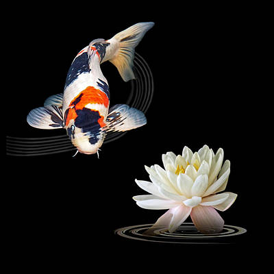 Photograph - Koi Carp Abstract With Water Lily Square by Gill Billington