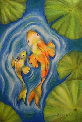 Drawing - Koi by Catherine Howley