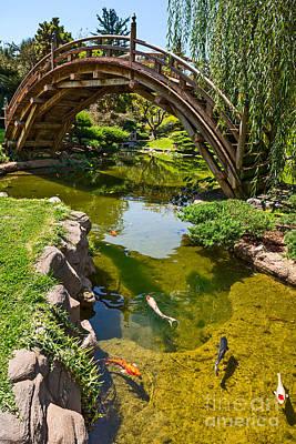 Koi Garden - Japanese Garden At The Huntington Library. Art Print