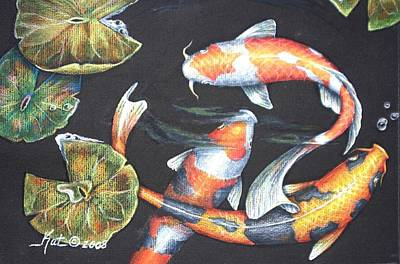 Lilly Pond Drawing - Koi by Kat Ewing