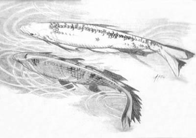 Drawing - Koi Pair Bw by Audrey Van Tassell
