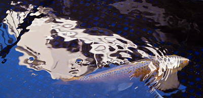 Photograph - Koi Pond Abstract by Michele Myers