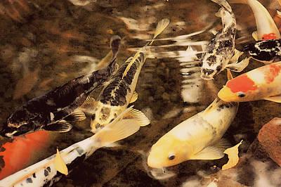 Koi Digital Art - Koi Pond by Amy Neal