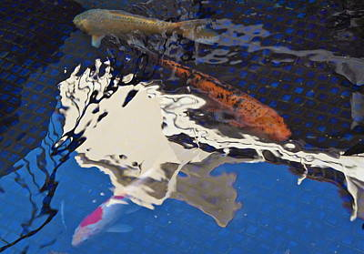 Photograph - Koi Pond Reflections by Michele Myers
