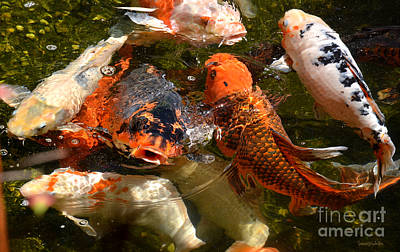 Photograph - Koi Rising by Susan Wiedmann