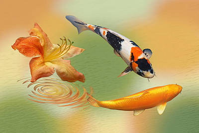 Photograph - Koi With Azalea Ripples Dreamscape by Gill Billington