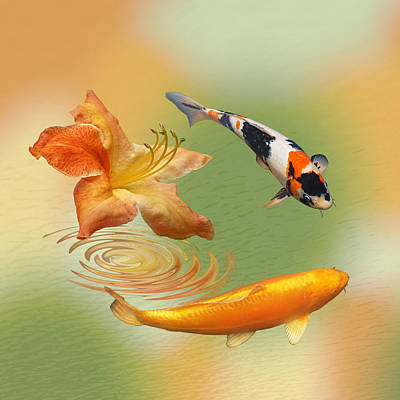 Photograph - Koi With Azalea Ripples Dreamscape Square by Gill Billington