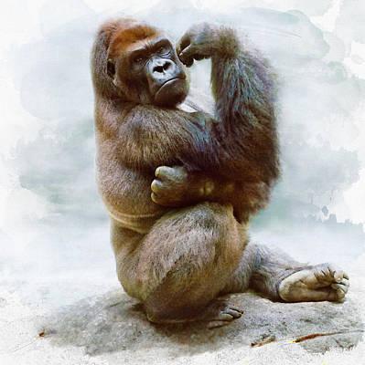 Koko The Gorilla  Original