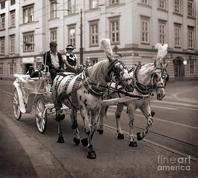 Photograph - Konie I Piwoz by Barry Lamont