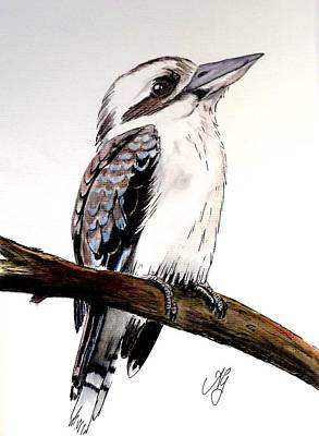 Painting - Kookaburra 5 by Anne Gardner