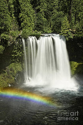 Photograph - Koosah Falls And Rainbow by Stuart Gordon