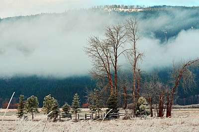 Photograph - Kootenai Frost by Annie Pflueger