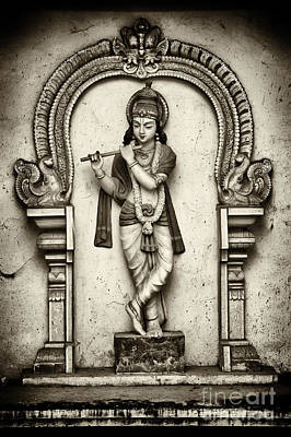 Krishna Temple Statue Art Print by Tim Gainey