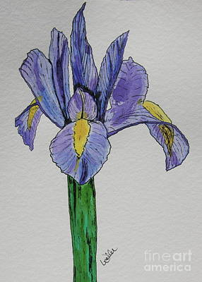 Kristinas Iris Art Print by Marcia Weller-Wenbert