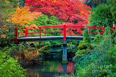 Fall Foliage Photograph - Kubota Gardens Bridge Number 2 by Inge Johnsson