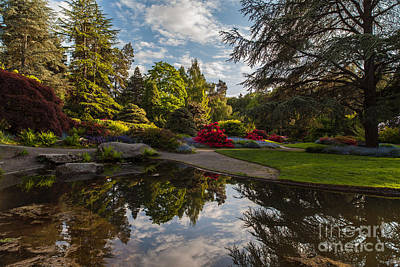 Koi Photograph - Kubotas Garden Vision by Mike Reid